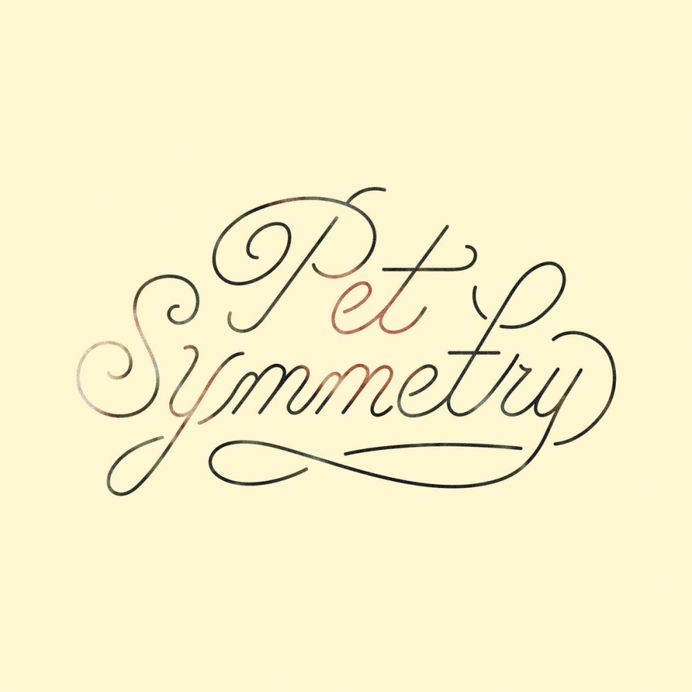 pet symmetry visions.jpg